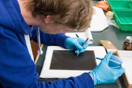 Heel voorzichtig wordt de emulsiezijde met scalpel en blaaspeer gereinigd.